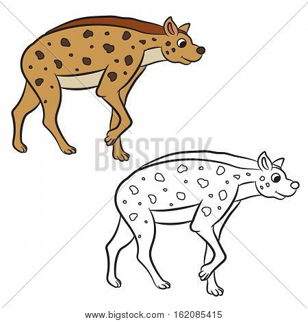 Illustration of hyena standing. Coloring book. Vector illustration