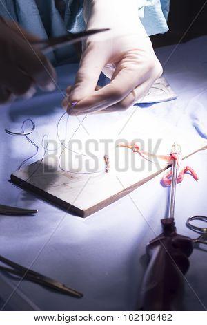 Knee Tendon Ligament Surgery