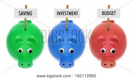 Piggy Banks with Sign Boards on White Background