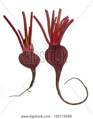 Fresh Beetroot with Stems on White Background