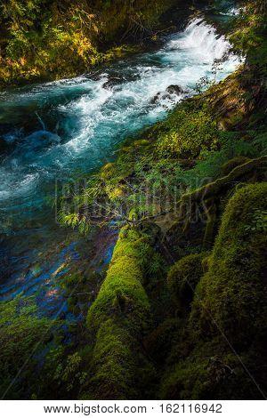 Mckensie River Down From Sahalie Falls Oregon