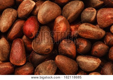 pine nuts in the shell photo, nutshell texture