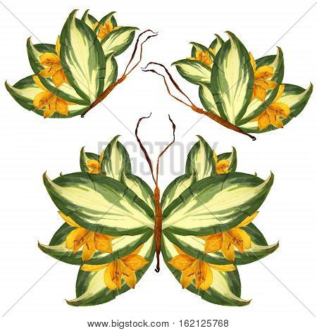 Floral Butterfly Made Of Lily Petals Leaves And Flowers