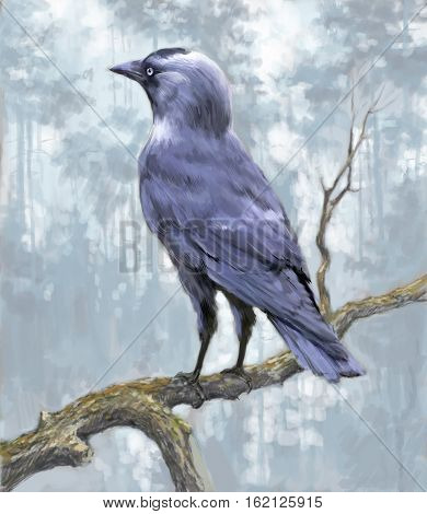 Hand-drawn Jackdaw on a branch in a forest.