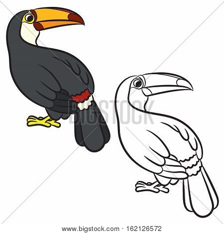 Toucan bird illustration. Coloring page. Vector illustration