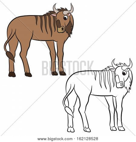Illustration of a wildebeest. Coloring page. Vector