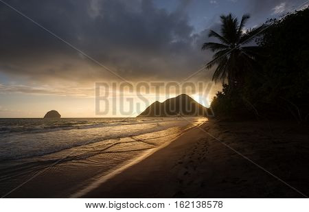 Martinique: the picturesque Le Diamant beach at sunset. Caribbean palms on the beach at sunset in West Indies