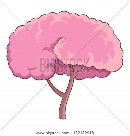 Sakura tree icon. Cartoon illustration of sakura tree vector icon for web