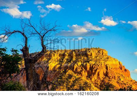MESA IN NEW MEXICO WITH DEAD TREE IN FOREGROUND AND BLUE SKY WITH CLOUDS IN BACKGROUND