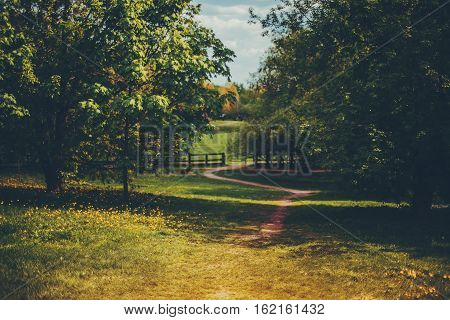 Meadow with wooden fence in distance with yellow bright area in front and path going through trees sunny summer or autumn day