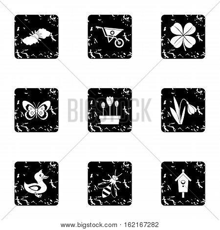 Garden icons set. Grunge illustration of 9 garden vector icons for web