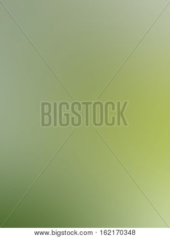 Green White Gray Abstract Background Blur Gradient