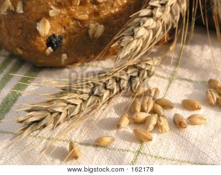Ear & Grain