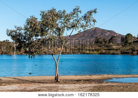 Lake Murray with Cowles Mountain in the background at Mission Trails Regional Park in San Diego, California.