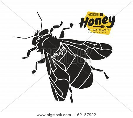 Stock vector illustration of honey bee. Print on white background