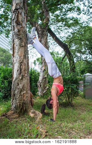 Sporty young woman doing handstand yoga exercise leaning on tree in park in summer. Professional female athlete standing on arms in asana position on summer day
