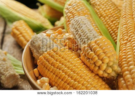 Corncobs and seeds in plate on table, closeup
