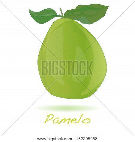 Pomelo or Chinese grapefruit image isolated on white background.