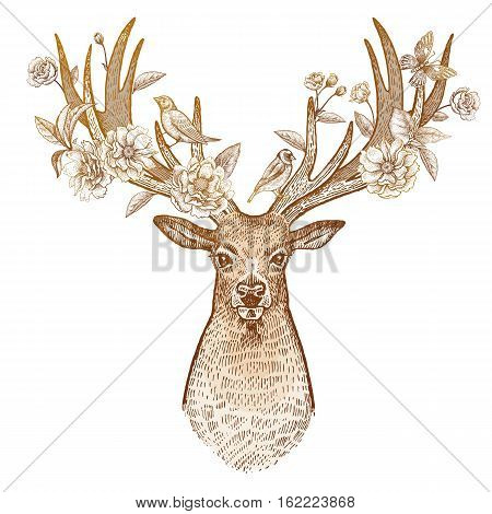 Head of deer with big horns full face and flowers branches and leaves of a flowering plum tree. The symbol of spring. Print gold foil on white background. Vector art illustration. Vintage.