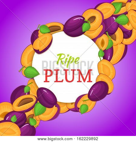 Round white frame on ripe plum diagonal composition background. Vector card illustration. Delicious fresh and juicy plum whole, peeled piece of half slice leaves seed. appetizing looking