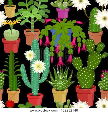 Blooming cactus on a black background. Seamless pattern. Vector illustration of flowers.