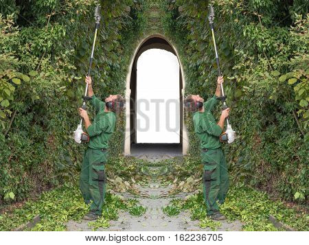Two men cutting a hedge with a motor hedge trimmer. In the background a passage with archway as Sleeping Beauty Castle