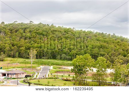 Village with trees and lawns near to the forest that has lots more green trees The sky is white and cloudy over the jungle trees in front of the straight road.