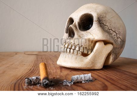 Close up of Human skull model and cigarette stub