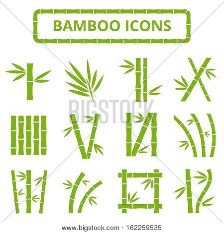 Bamboo stalks and leaves vector icons. Asian bambu zen plants isolated on white background. Stick bamboo with foliage, curve frame bamboo illustration