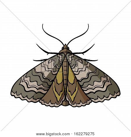 Moth icon in cartoon design isolated on white background. Insects symbol stock vector illustration.