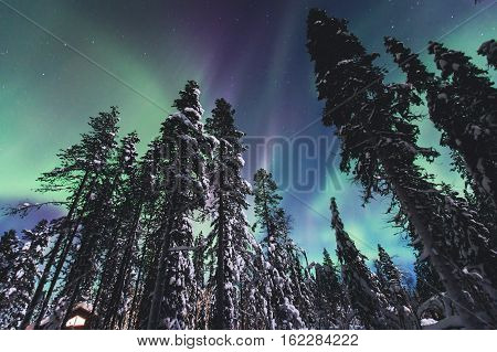 Beautiful picture of massive multicolored green vibrant Aurora Borealis, Aurora Polaris, also know as Northern Lights in the night sky over winter Lapland landscape, Norway, Scandinavia poster