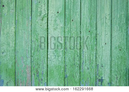 green old wooden fence. wood palisade background. planks texture. greenery