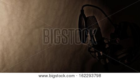 Studio Condenser Microphone And Equipment In The Shade