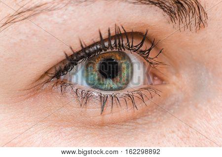 Close up human extreme macro green and brown eye with natural eyelash looking straight. Macro shot of woman part of head.