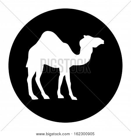 Camel Icon Silhouette Illustration in black disc
