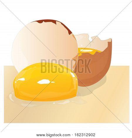 Broken egg isolated illustration on white background .