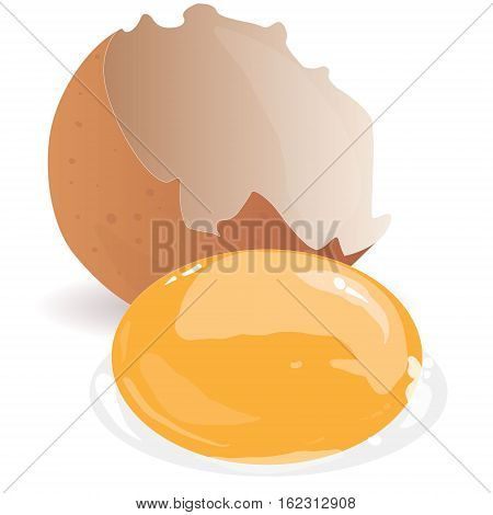 Broken egg isolated illustration on white background .