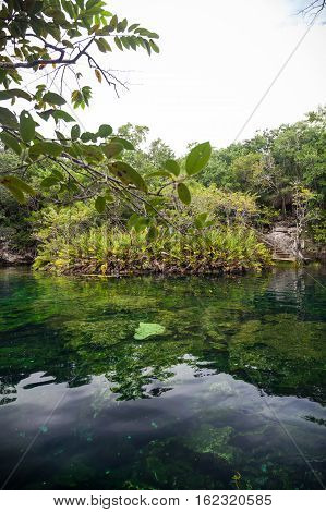Cenote With Pure Water, Mexico