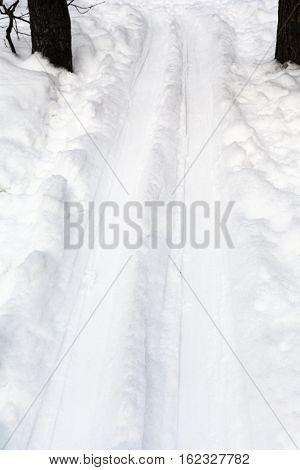 Deep Ski Run In Forest In Winter