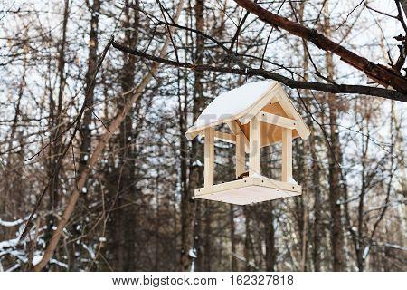 Bird Feeder On Tree Branch In Forest In Winter