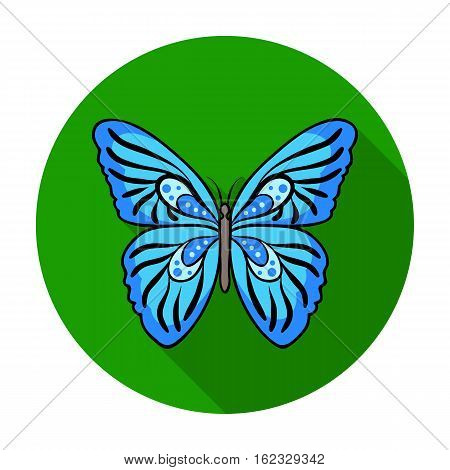 Butterfly icon in flat design isolated on white background. Insects symbol stock vector illustration.