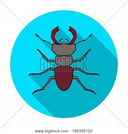 Forest red ant icon in flat design isolated on white background. Insects symbol stock vector illustration.