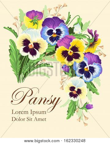 Vector vintage card with beautiful bouquet of pansies