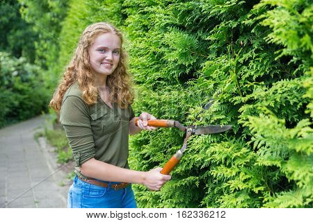 Caucasian teenage girl pruning hedge with hedge shears