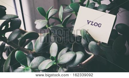 Room Money Tree, Words On Paper Sticker