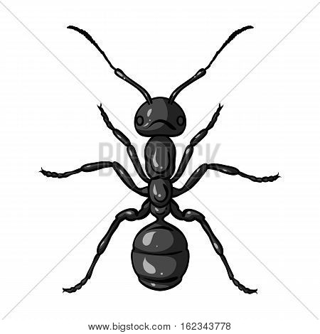 Ant icon in monochrome design isolated on white background. Insects symbol stock vector illustration.