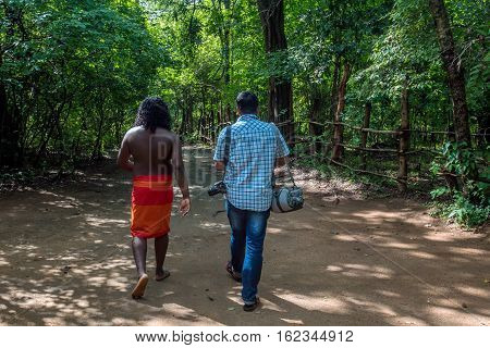 Vedda man walking in jungle with tourist. Veddas are an indigenous people of Sri Lanka living in tribes in the jungle