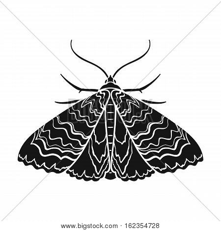 Moth icon in black design isolated on white background. Insects symbol stock vector illustration.