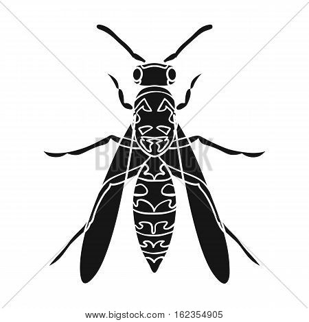Wasp icon in black design isolated on white background. Insects symbol stock vector illustration.