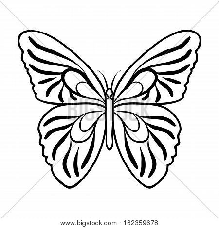 Butterfly icon in outline design isolated on white background. Insects symbol stock vector illustration.